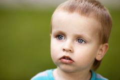 Little boy portrait Stock Image
