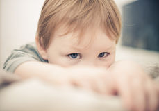 Little boy portrait Stock Photos