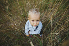 Little boy portrait in high grass Royalty Free Stock Photo