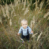 Little boy portrait in high grass Royalty Free Stock Photography