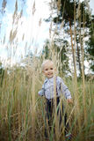 Little boy portrait in high grass Stock Photo