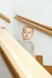 Little boy portre Stock Image