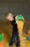 Little boy pouring corn kernels. Little boy playing in corn silo, pouring corn kernels Stock Photos