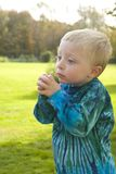 Little boy praying Royalty Free Stock Image