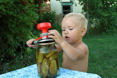 Little boy preserves cucumbers. Little boy copy the behavior of adults. Kid preserves cucumbers Royalty Free Stock Image