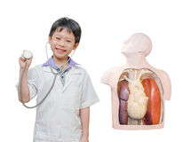 Little boy pretend to be doctor Stock Photography