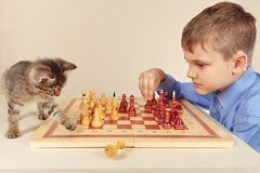 Little boy with pretty kitten plays chess. Little boy with a pretty kitten plays chess Royalty Free Stock Images