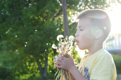 Little boy profile blowing dandelion flower at summer. Happy smiling child enjoying nature in park Stock Photo