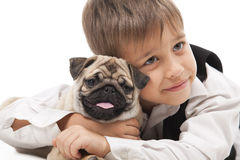 Little boy and the Pug-dog. Isolated on a white background Royalty Free Stock Images