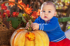Little boy with pumpkin. Photo taken autumn day Stock Photo