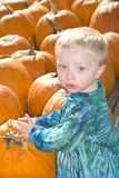 Little Boy with Pumpkins Royalty Free Stock Images