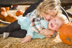 Little Boy que joga com sua irmã do bebê no remendo da abóbora Fotografia de Stock