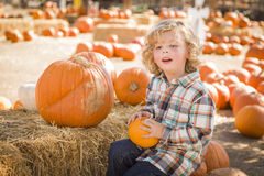 Little Boy que senta e que guarda sua abóbora no remendo da abóbora Foto de Stock Royalty Free