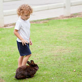 Little boy with rabbit Stock Photography