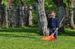 Little boy and the rake Royalty Free Stock Photo