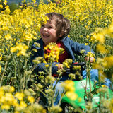 Little boy on rapeseed field Royalty Free Stock Photo