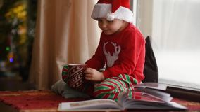 Little boy reading a book and drinking hot cocoa in decorated cozy living room. Happy kid on Christmas time. Activity for children on winter holidays stock video