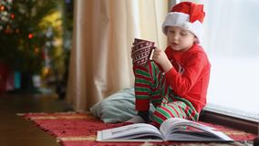 Little boy reading a book and drinking hot cocoa in decorated cozy living room. Happy kid on Christmas time. Activity for children on winter holidays stock video footage