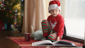Little boy reading a book and drinking hot cocoa in decorated cozy living room. Happy kid on Christmas time. Activity for children on winter holidays stock footage