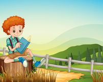 Little boy reading book in the field Stock Photo