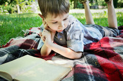 Little boy reading a book while lying on a mat in the park close royalty free stock photography