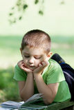Little boy reading book in park Royalty Free Stock Photos