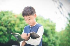 Little boy reading book royalty free stock photos