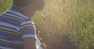 Little boy reading book He is sit at the middle of the lawn Sun Rays fall down to his head. Smooth camera movement stock footage