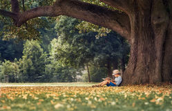 Little boy reading a book under big linden tree Royalty Free Stock Images