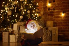 Little boy reading a magic book in decorated cozy living room. Portrait of happy kid on Christmas eve royalty free stock photos