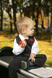 Little boy reads a book. In autumn Stock Image