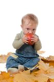 Little boy and red apple. Royalty Free Stock Image