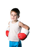 Little boy with red boxing gloves on white background isolated Stock Photos