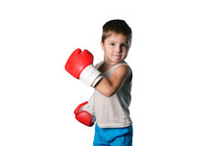 Little boy with red boxing gloves on white background isolated Royalty Free Stock Image