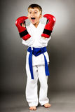 Little boy with red gloves training karate Royalty Free Stock Photos