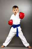 Little boy with red gloves training karate Stock Image