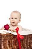 Little boy with red  rose Royalty Free Stock Photos