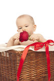Little boy with red  rose Stock Image