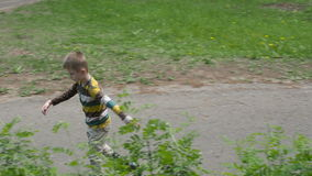 Little boy rides on roller skates in the park stock video