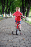 Little boy riding a bike in park Stock Images