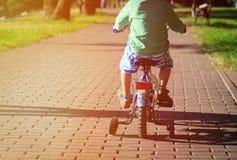 Little boy riding bike in summer park Stock Image