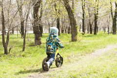 A little boy is riding in a park on a bicycle, a children`s sport and an active lifestyle,run bike, balance bike Royalty Free Stock Image