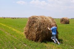 Little boy rolls a big bale of straw with great efforts. On the green field Royalty Free Stock Photos