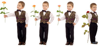 Little boy with rose Stock Photography