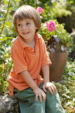 Little boy in rose garden Royalty Free Stock Images