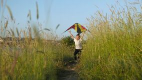 Little boy running along trail in high grass and holds a toy kite over his head. Victory concepts stock video footage