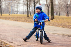 Little boy on running bike in autumn Stock Images