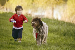Little boy running with a dog Stock Images