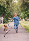 Little boy running with his beagle puppy Stock Images