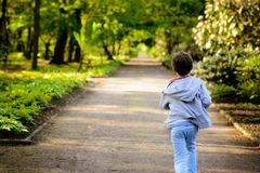 Little boy running in the park. Back view Stock Photo